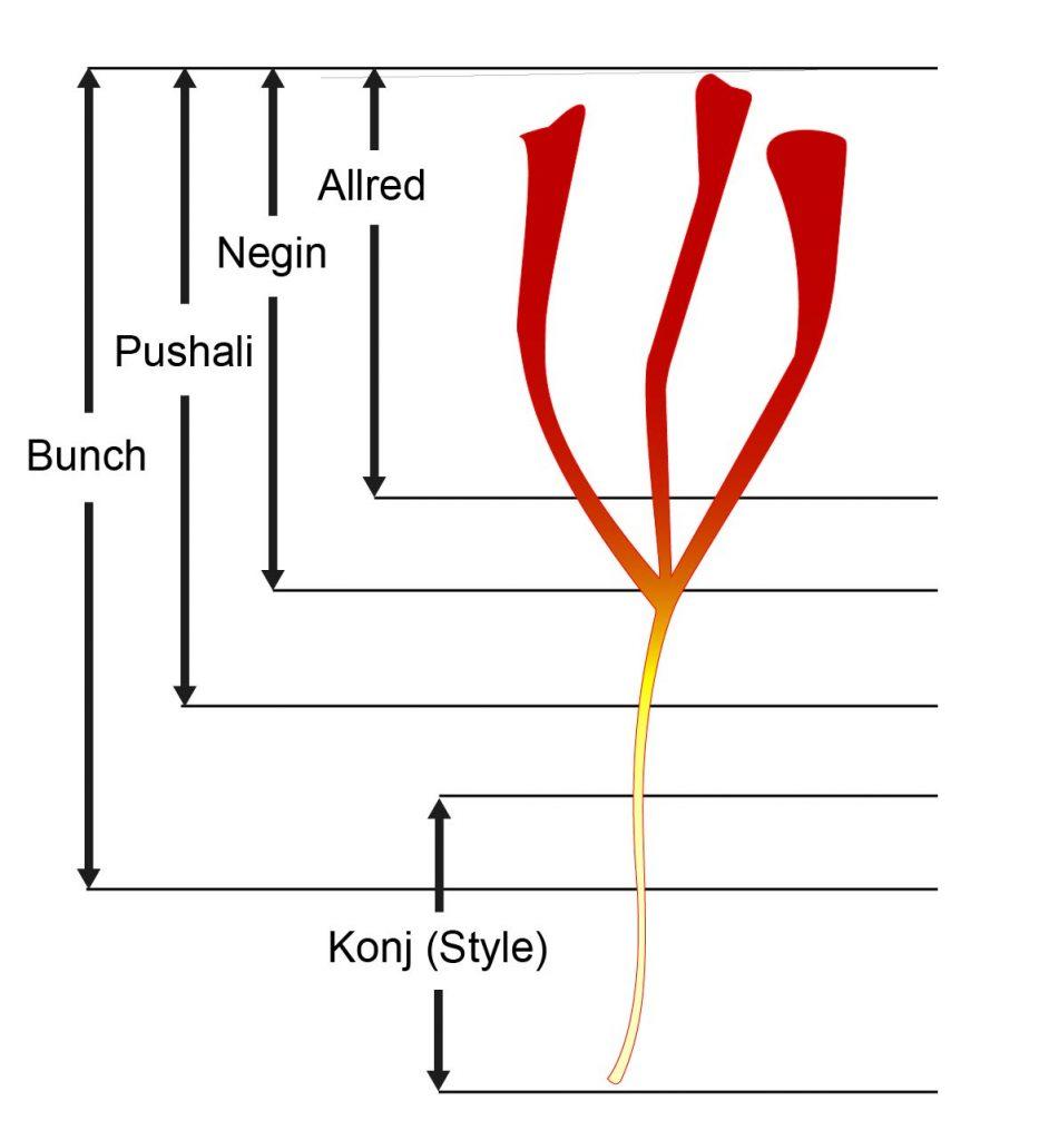 Classification du safran iran